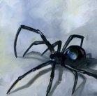 Mean Little Spider