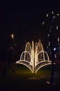Fountain of Light