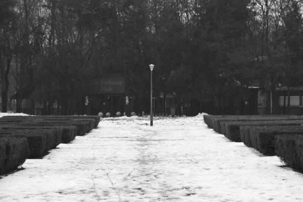 black and white lamp post solitude