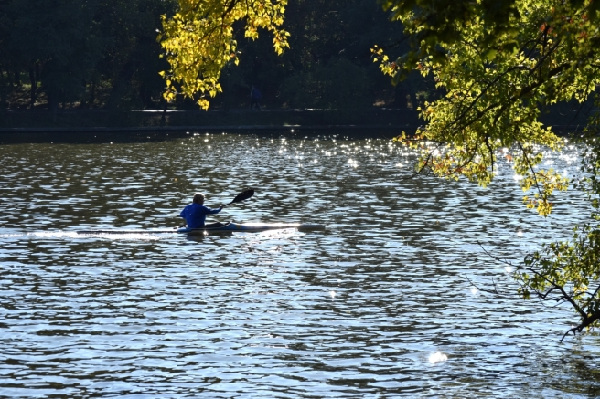 man paddling lake park