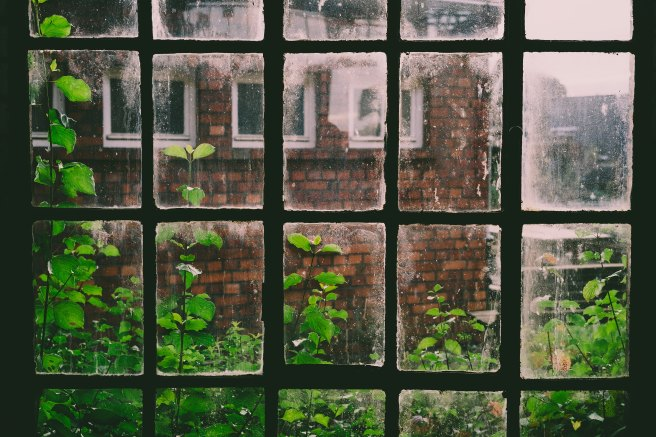 writing is like a windowpane