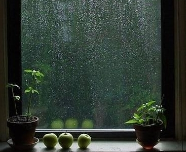 photograph of a rainy window
