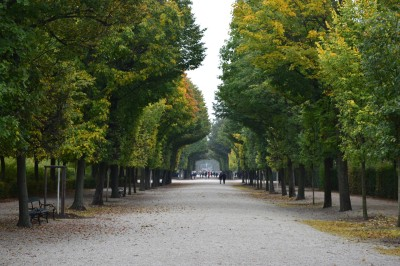 Walk at the Schonbrunn