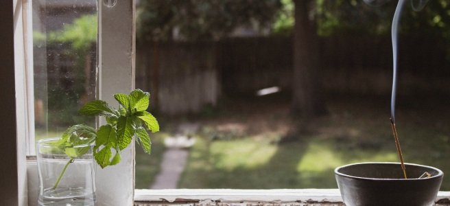 green-lawn-with-fence-in-the-background-seen-through-an-open-sunlit-window-with-pots-and-cut-of-coffee-on-the-windowsill