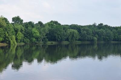 view-over-herastrau-park-from-bridge